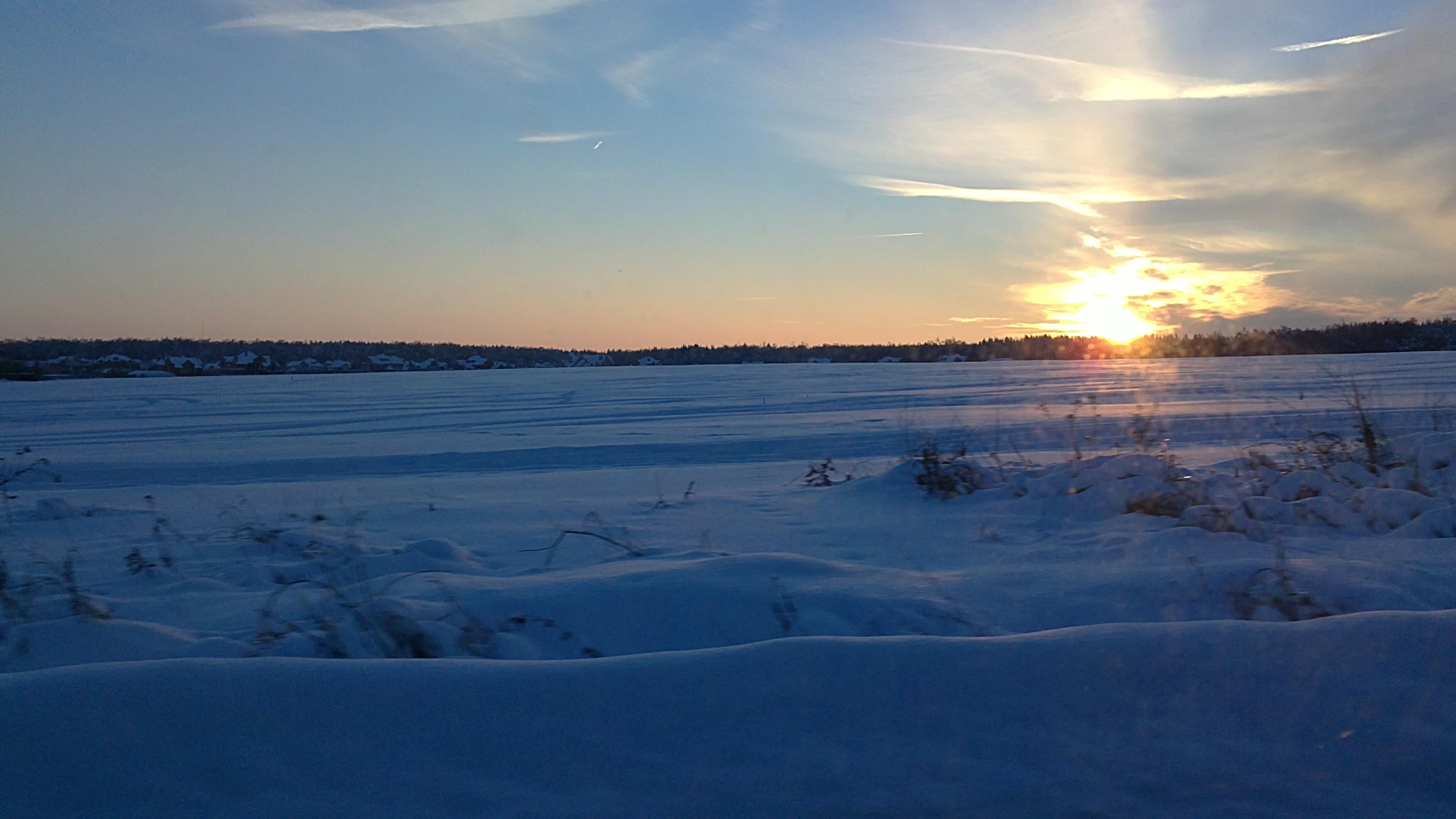 заповедные поляны зимой