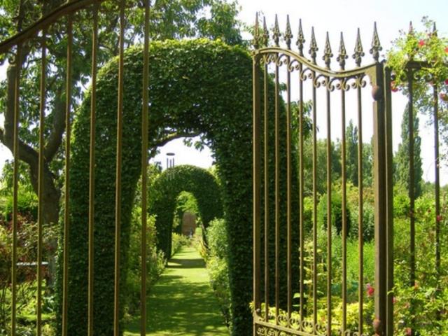 Английский сад, английский, берег, водоем, галечные, естественность, естественные, игра, искусственные, неровности, песчаные, растения, сад, светотени, english garden