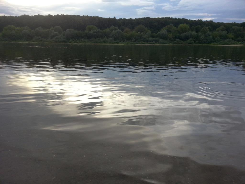 Заповедные поляны Травушкино можно проехать на берег Оки